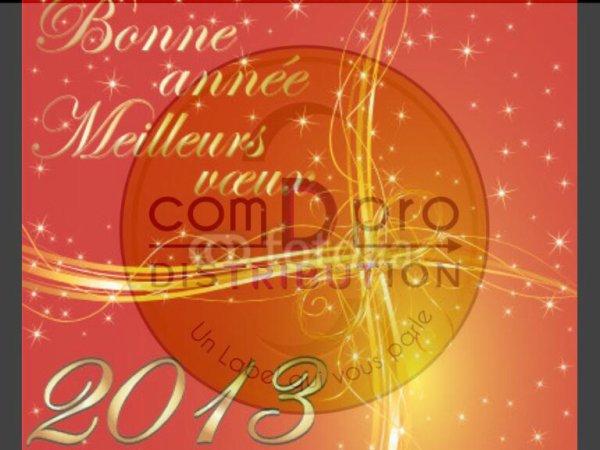 Bonne et heureuse Année 2013 A Tous!!!