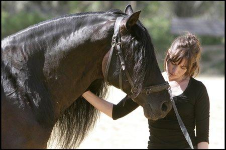 Equitafilm : Décompte