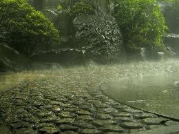 Ma chère pluie