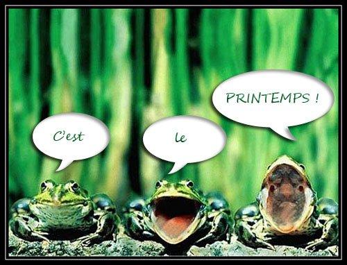 PRINTEMPS!!!!