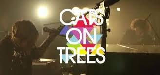 bienvenue sur mon blog cats on trees ♫♫♫
