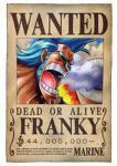 Franky ( Moitier humain et Moitier Robot ! )