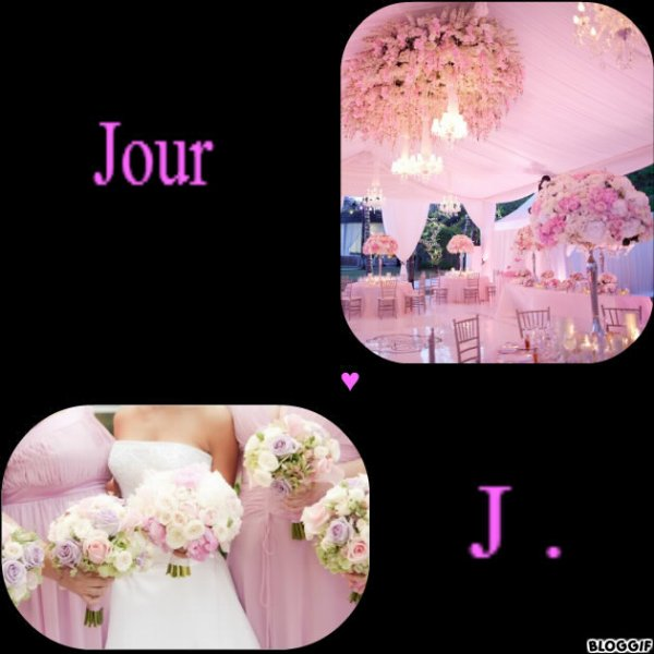 Chapitre 42 : Jour J. . .  ♥