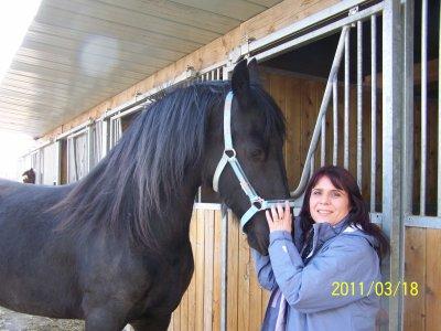 je vous présente ma jument christina née le 5 mai 2008 que j'ai rebatisé tina elle est entrée dans ma vie le jour ou j'ai visité l'élevage de frison du petit vallois dans le nord de la france et l'homme qui partage ma vie me l'a offert ! Merci mon amour pour le plus beau cadeau qui soit je t'aime tellement .....tina est venue nous rejoindre en savoie hier le 17 mars 2011 et je vous laisserais découvrir l'évolution de ma perle noire au fil du temps.... pour l'instant vient juste le moment de se découvrir toute les deux avant de commencer a travailler .