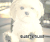 SweetyMilkie