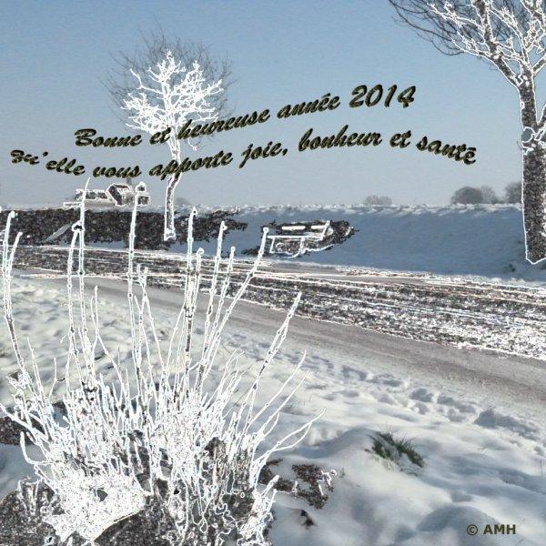 bons voeux 2014