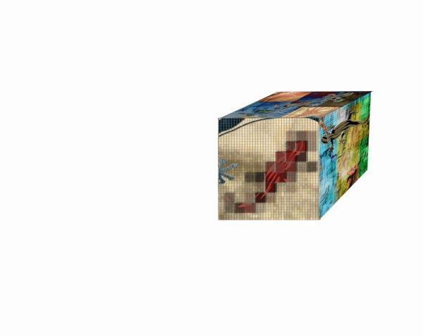 premier cube lézard