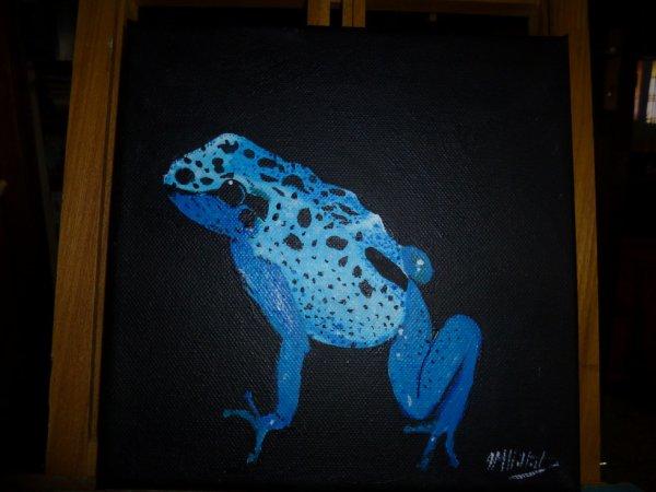 grenouille tropicale bleue