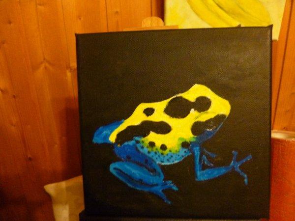 grenouille tropicale jaune bleu