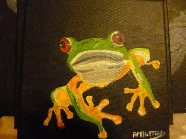 grenouille reinette
