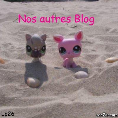 Nos autres Blog