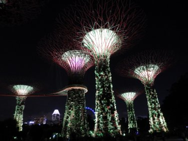 #20 - Gardens by the Bay & Convocation