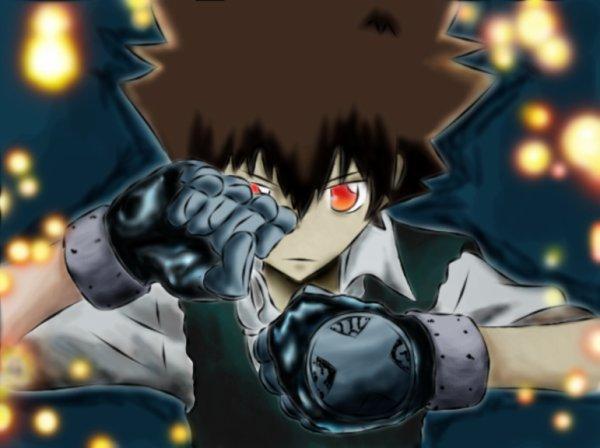 Kateikyoushi Hitman Reborn ! la fin