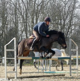 • Stage Saut - Passage de Galop •