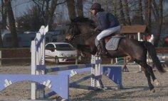 • Concours à Romilly du 6 mars 2011 •