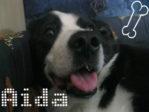 Aida :D<3