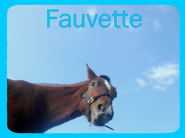 Fauvette. ~`