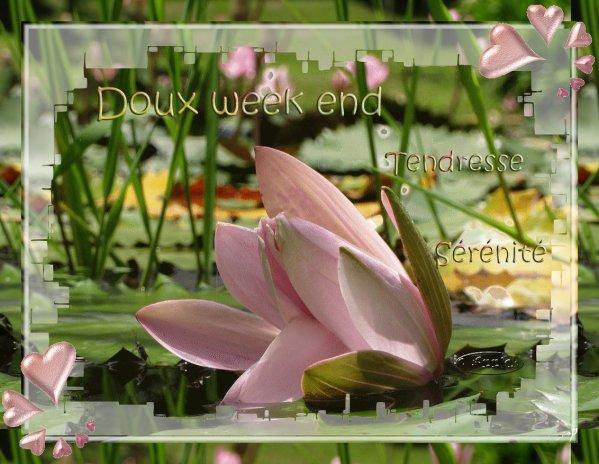 DOUX WEEK-END A TOUS .......AVEC TENDRESSE ET SERENITE