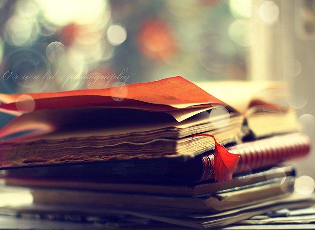 Place à la lecture !