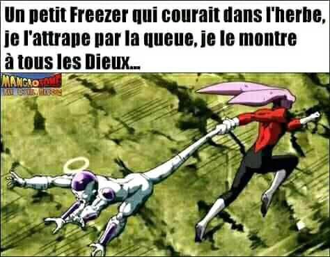 Un petit Freezer