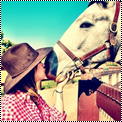 Thème chevaux