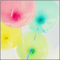 Thème:coloré