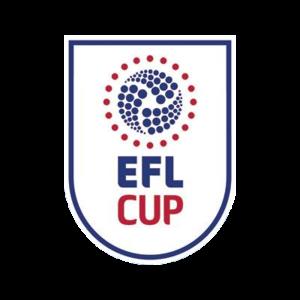 La Coupe de la Ligue 2017