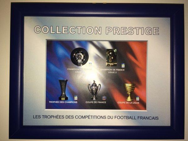 Les 5 trophées du football français en pins