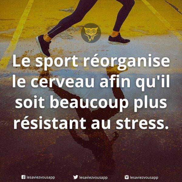 Forgez votre armure anti-stress ...