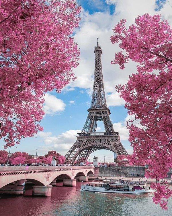 Tour Eiffel (France)