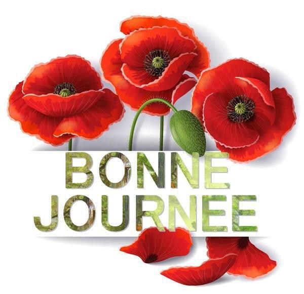 - BONNE JOURNEE COQUELICOTS -