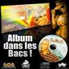 LGA-album-solo