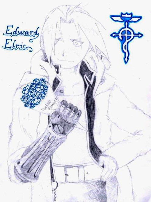 Edward : Pocket flowers