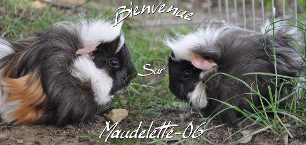 maudelette-06
