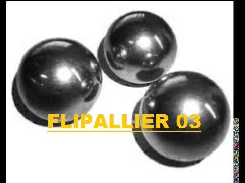 Bienvenue sur le blog : FlipAllier03