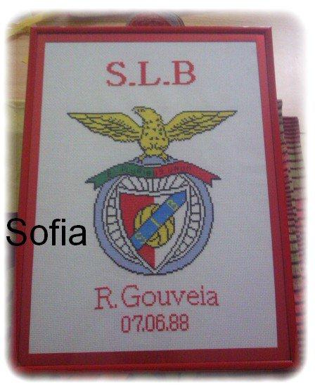 Benfica!!! ça fesais longtemps là...lol