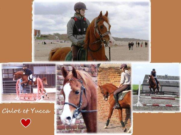Bienvenue à tous sur le blog de Chloe & Yucca ♥