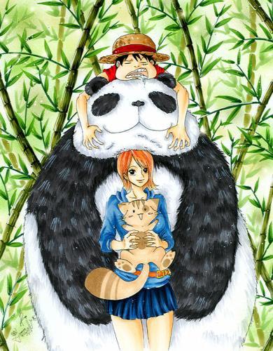 Luffy ♥ Nami (partie 2)