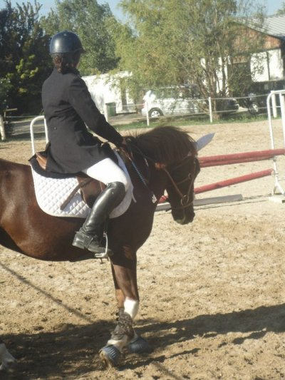 Training ; Addestramento ; Dressage ; Treinando ; Dressur