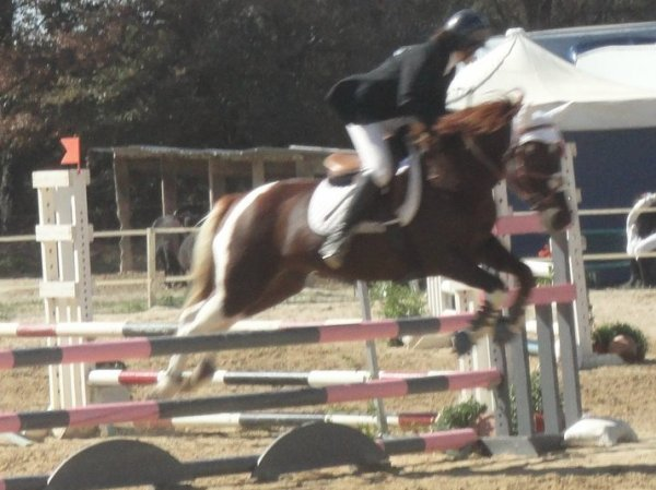 Скачок ; Salto ; Saut ; Sprung ; Jump