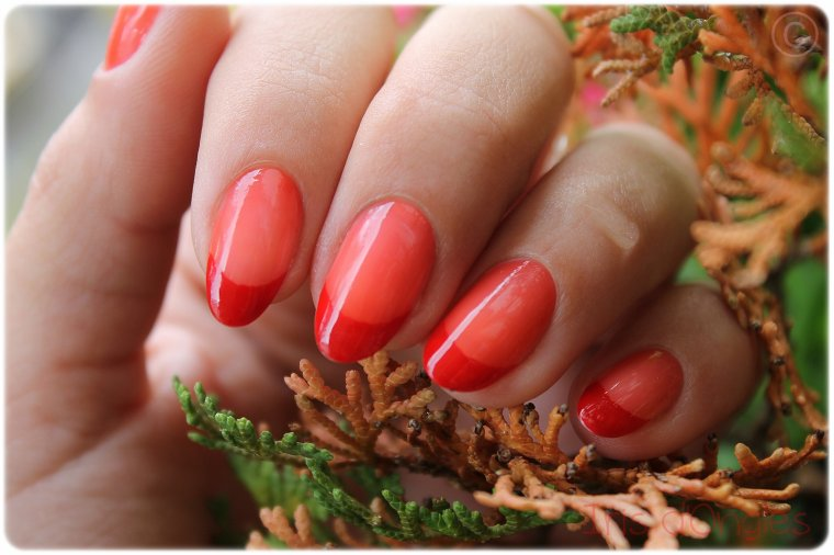 "Test: vernis ""Grenadine Tonic"" de chez BOURJOIS (sur french rouge) (l) (l)"