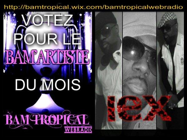 http://bamtropical.wix.com/bamtropicalwebradio#!votez-pour-le-bamartiste-du-mois/cnhr