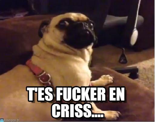 Deuxième manche québécoise...