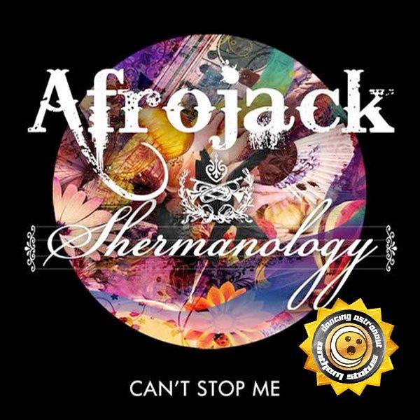 afrojack (2012)