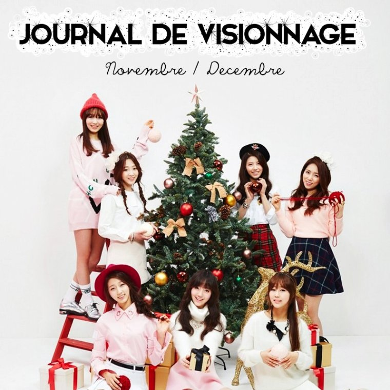 Journal de Visionnage - Novembre/Décembre 2014