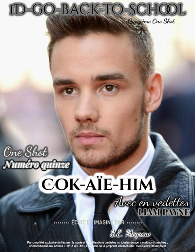 OS n°15 - Cok-aïe-him