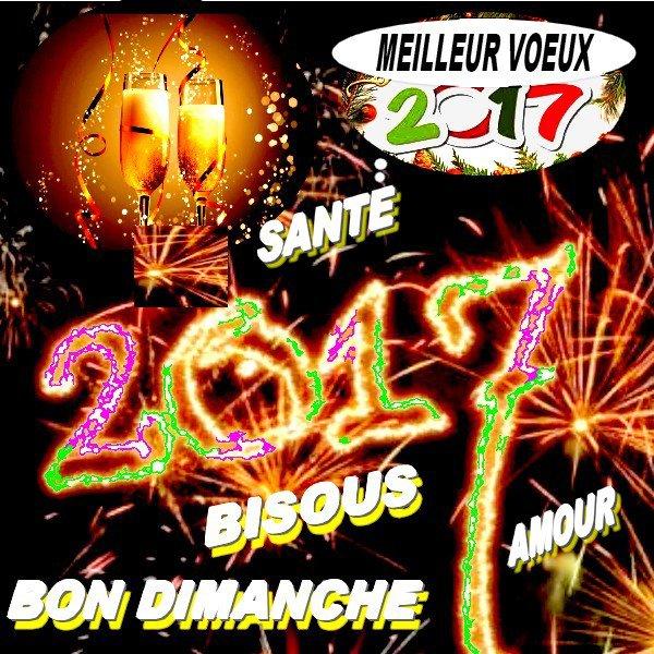 MEILLEURS VOEUX POUR L'ANNEE 2017