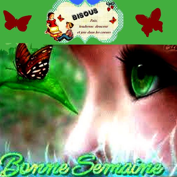 BONNE SEMAINE A TOUS
