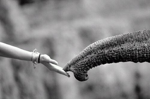 Tendre la main vers l'autre est un premier pas d'amour
