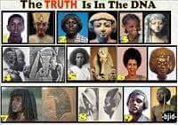 La vérité dans l'ADN